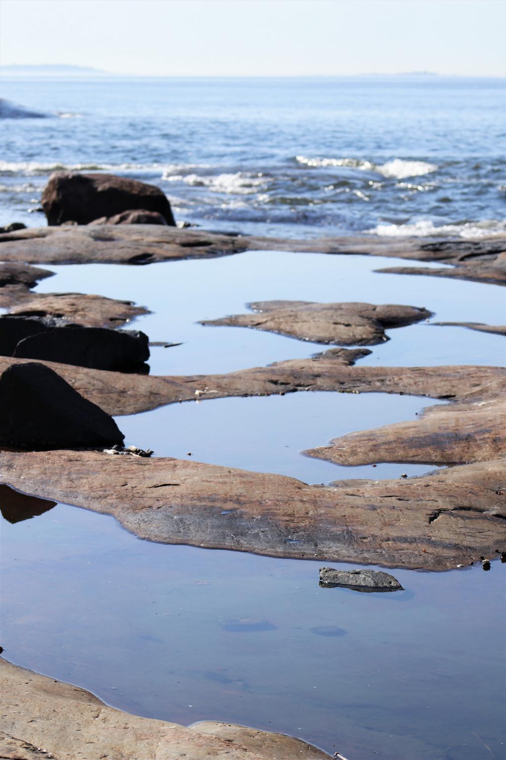 Kuva kalliolammista: Marianne Saviaho