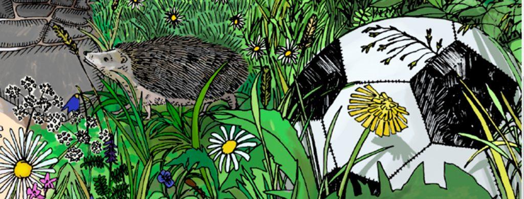 Vihreän lipun uuden luonnon monimuotoisuus -teemamateriaalin kuvituskuva.