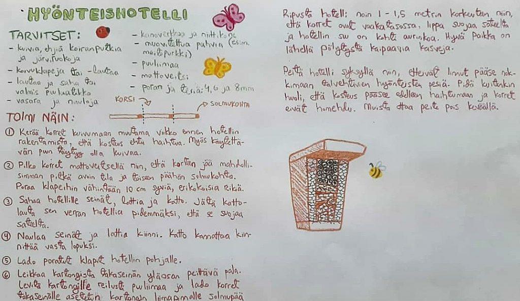 Lukiolaisten tekemä kuvitettu ohje hyönteishotellin tekoon.