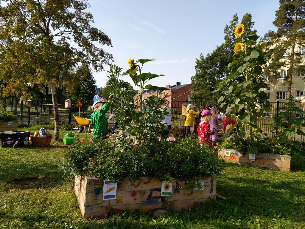 Kuva ympäristökasvatuksen Ruusu -tunnustuspalkinnon vuoden 2020 saajan, Upseerin päiväkodin puutarhasta.